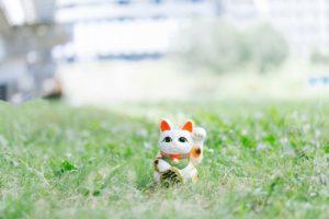 草原の中の招き猫