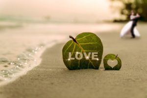 LOVE 海