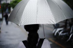 ワードプレス ブログ Green Ring 雨
