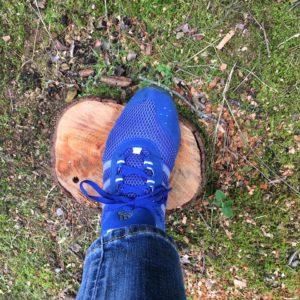 ワードプレス ブログ Green Ring 青い靴
