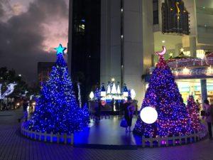 ワードプレス ブログ Green Ring 沖縄のツリー