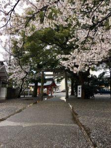 ワードプレス ブログ Green Ring 金神社2